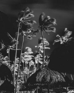 PuntaCana-DerekLivingston (14 of 25)